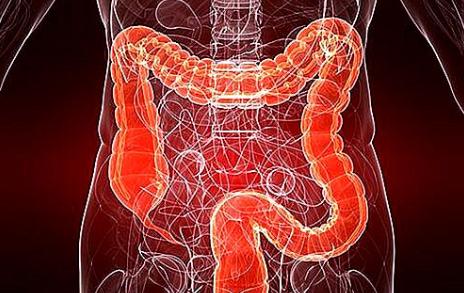 بیمارى IBD؛ درمان روده های ملتهب با دانه های سرخ رنگ خوراکی