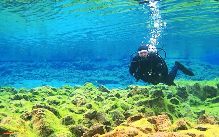 بهترین مناطق برای غواصی در تایلند