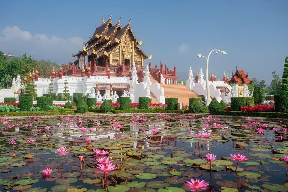 تایلند لوکیشن پر طرفداترین فیلم های سینمایی