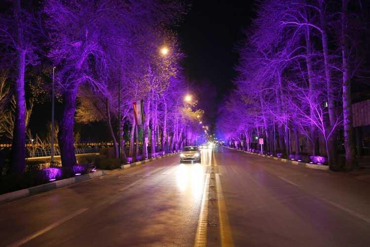 نورپاشی شبانه درختان اصفهان
