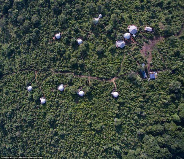 اقامتگاه های گنبدی و لوکس در جنگل های آفریقا