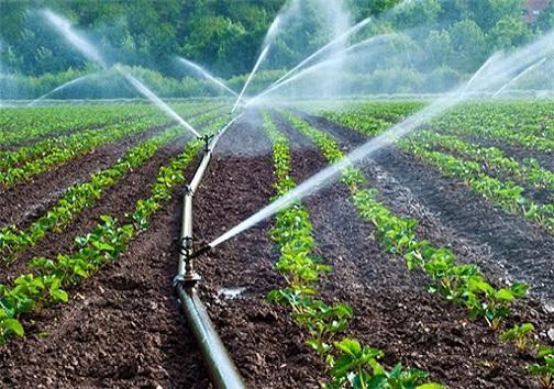 رونق کشاورزی در مناطق عشایری کهگیلویه با اجرای طرح های آبیاری