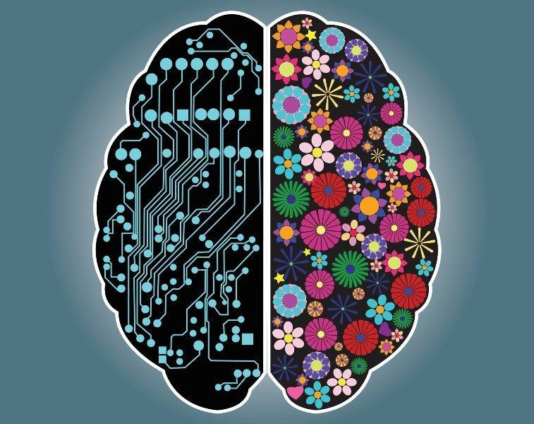 اینفوگرافیک ، تاثیر نیم کره های مغز بر عملکرد افراد ، چگونه بازدهی فردی خود را افزایش دهیم؟