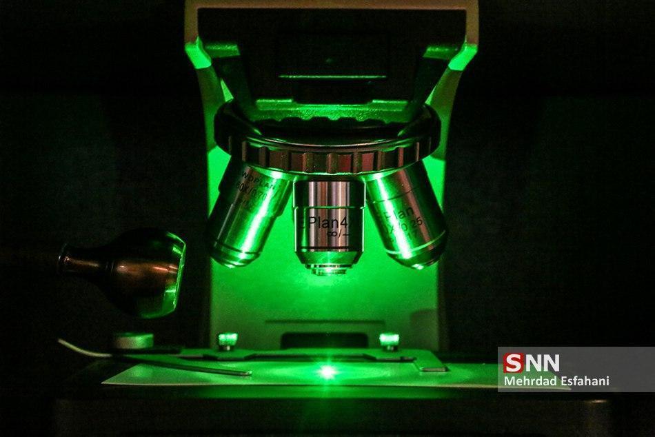 برنامه ریزی دانشگاه آزاد مشهد برای مسائل نرم افزاری هسته های فناور
