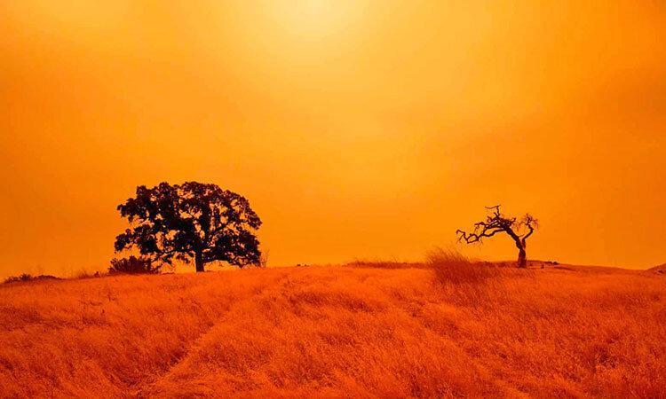 آمریکا در آتش می سوزد ، ده ها کشته و میلیون ها بی خانمان در مهیب ترین آتش سوزی سال