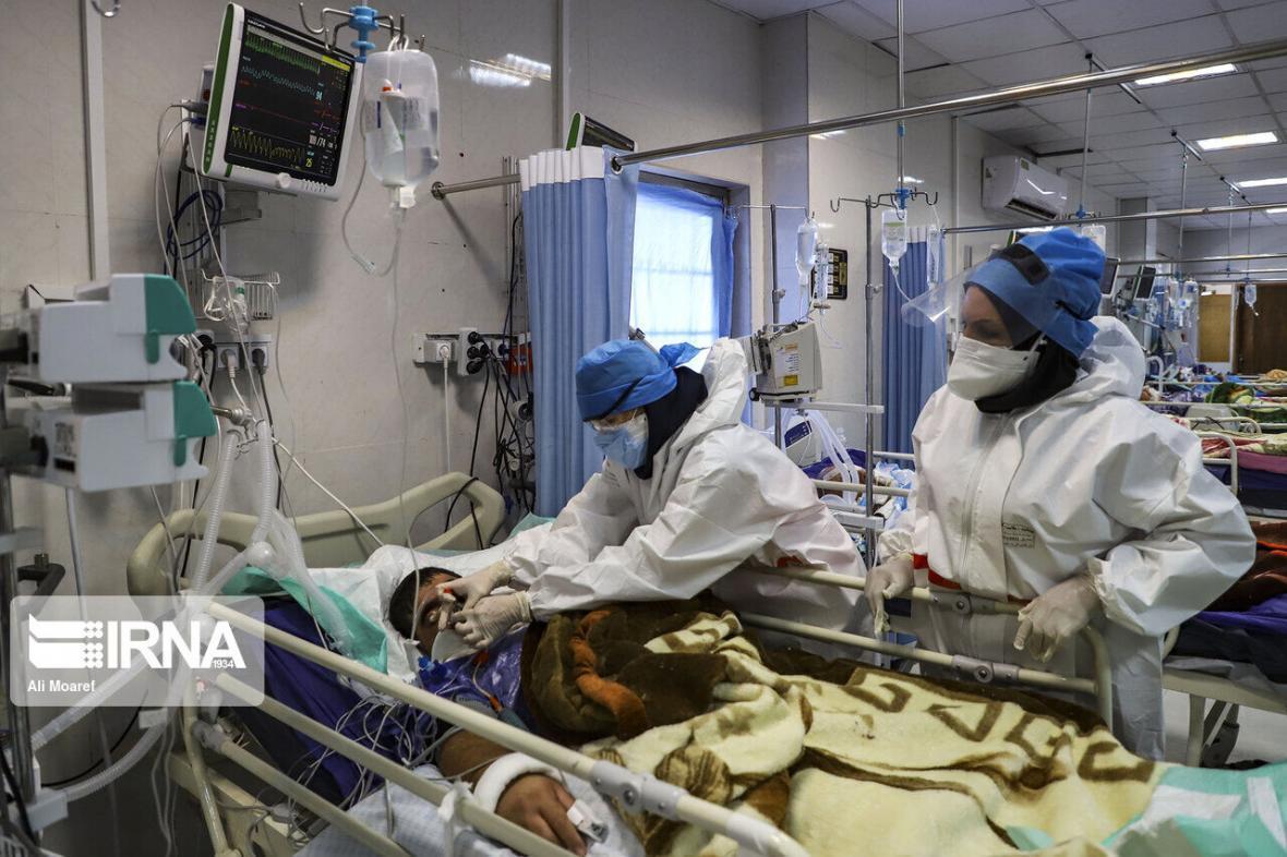 خبرنگاران رئیس علوم پزشکی: 15 بیمار کرونایی در قم جان باختند