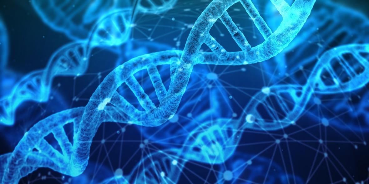 نانوساختار سه بعدی ابررسانا با استفاده از رشته های DNA فراوری شد