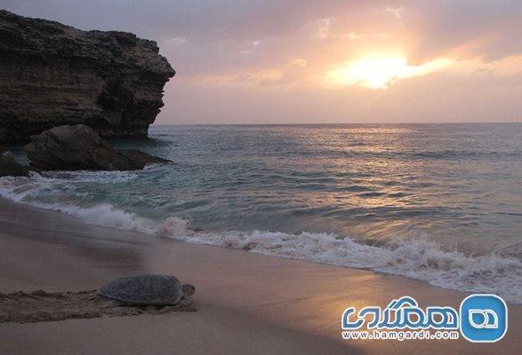 آشنایی با مهمترین دلایل برای سفر به عمان
