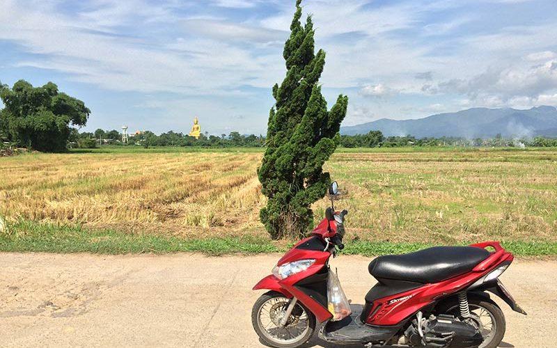کرایه موتور در تور تایلند